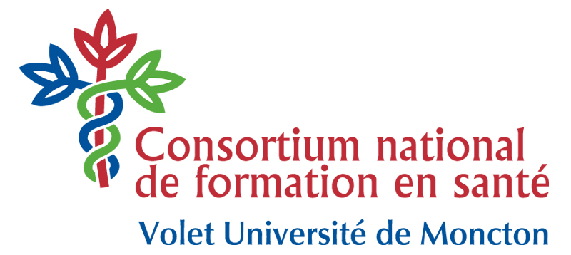 logo cnfs couleur (haute resolution)