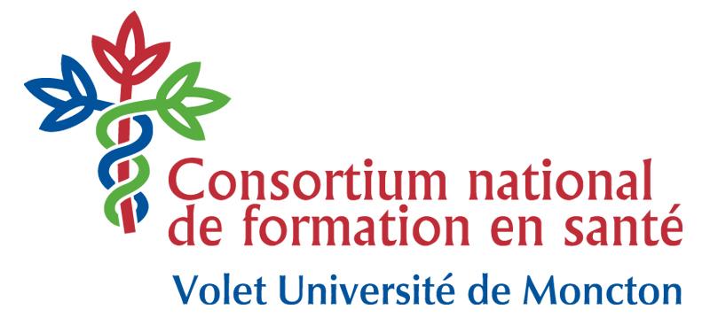 logo cnfs couleur (haute resolution)