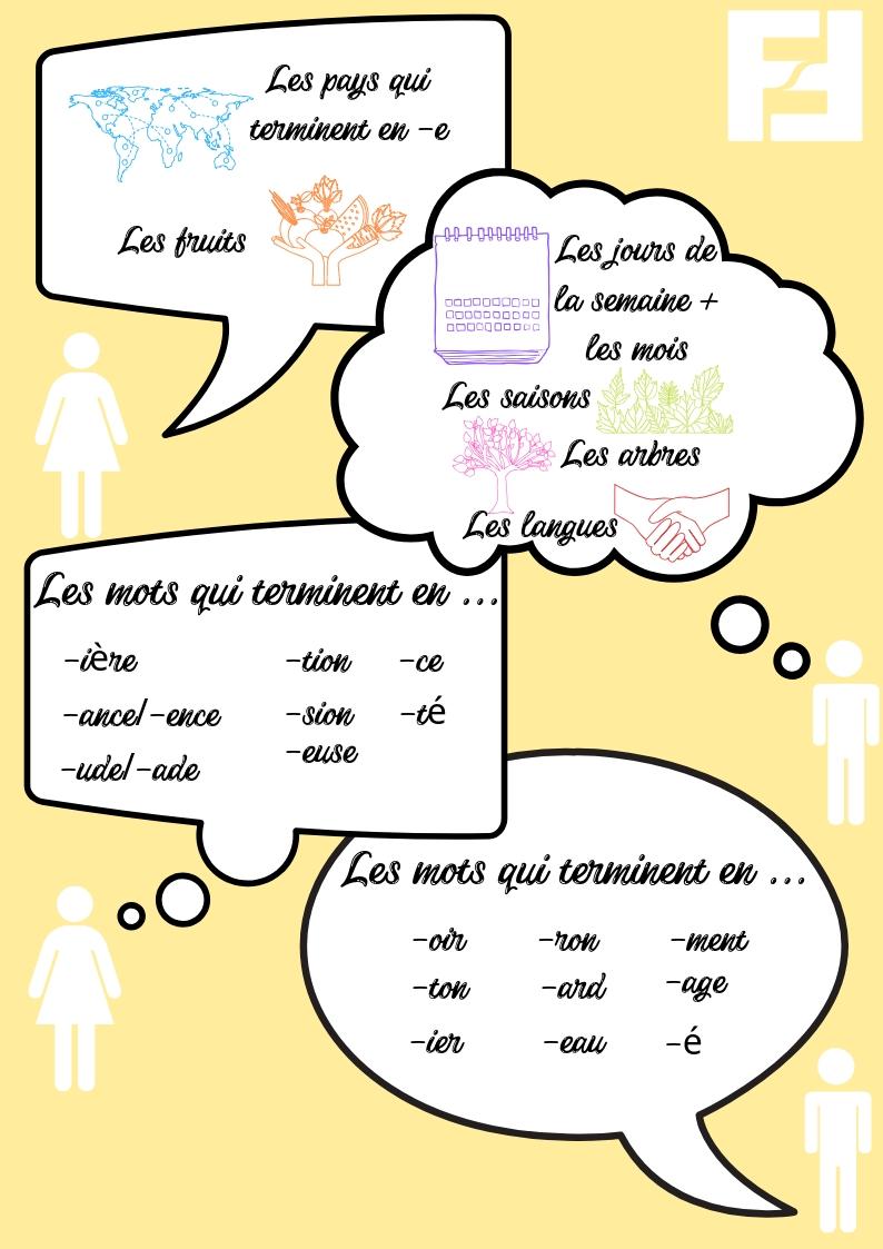 les-regles-des-articles-en-francais