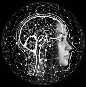 bilinguisme-structure-cerveau