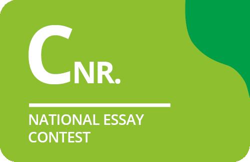 Logo-rectangle-CNR-EN